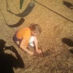 elisha_digging